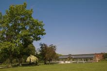 Gaynes Park trees
